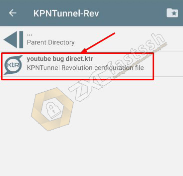How to Import KPNTunnel Config