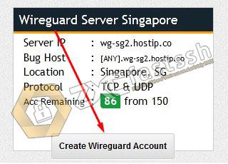Wireguard Singapore server