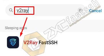 How to Settings V2Ray Application If Force Close
