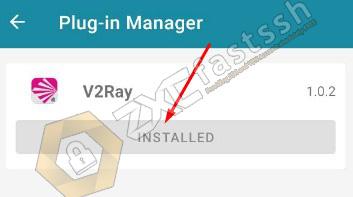 V2Ray plugin