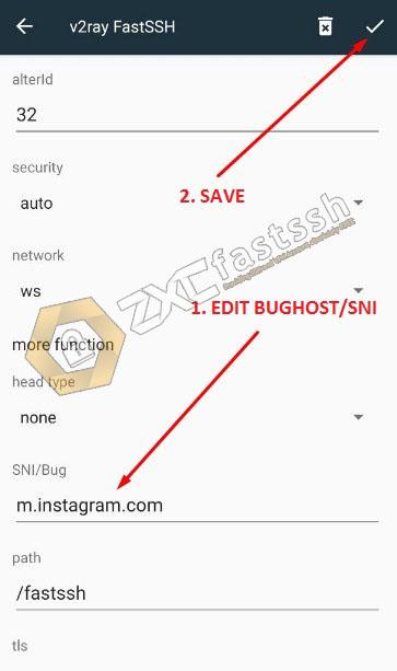 BugHost/SNI V2Ray