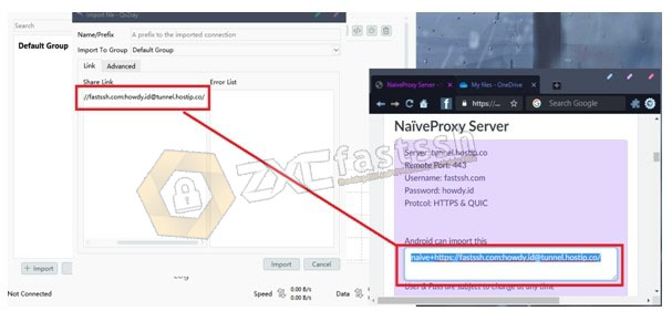 How to Use NaiveProxy on PC