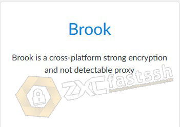 How to Use Brook on PC for Free Internet