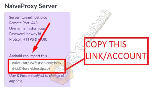 How to Use NaiveProxy on Android