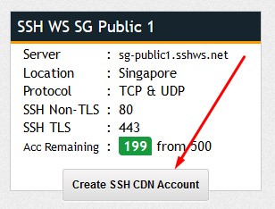 How to Use SSH Websocket (WS) on PC